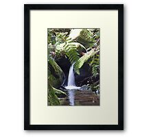 Waterfall, Coachwood Glen, Megalong Valley, Blue Mountains, NSW Framed Print