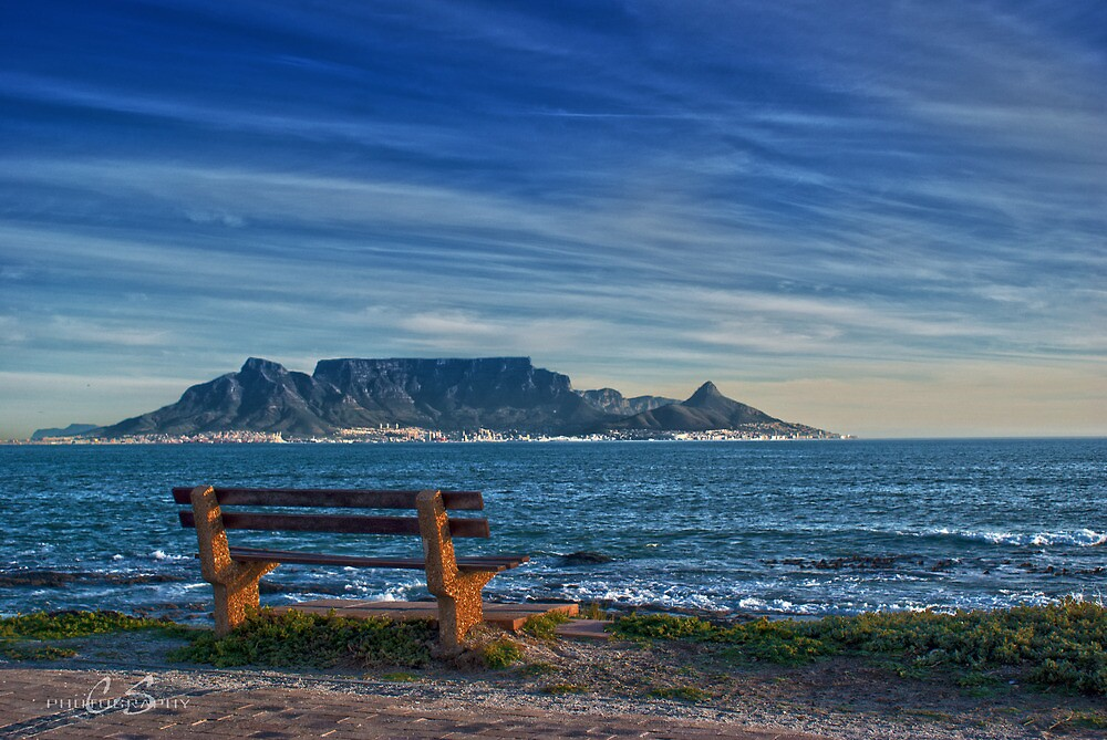 Benched View by CollinScott