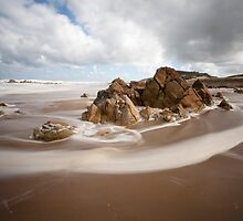 Pristine Beach, West Coast, Tasmania by David Jamrozik