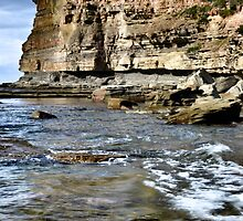 Terrigal Skillion by Robyn Forbes