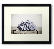 faded colors Framed Print