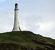 the hoad monument ulverston . by Dahlia48