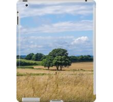 Sussex Countryside on a Summer Day iPad Case/Skin
