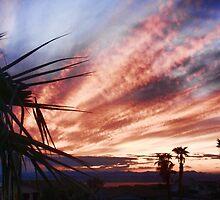 Another Havasu Sunset by tvlgoddess