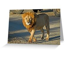 Straight in the eyes Greeting Card