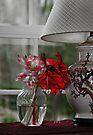 Vase of Flowers by Eileen McVey