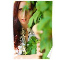 Anoush - Vines Poster