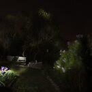Stars Above the Garden by FrankSchmidt