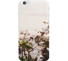 Cotton Field 6 iPhone Case/Skin
