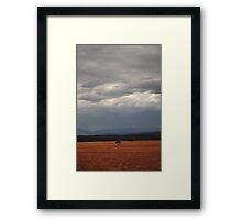 Russet-grey day Framed Print