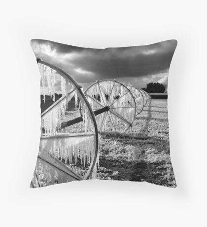 Dedicated to Maree Cardinale ~ (2 features in 1 Day~!! ) Throw Pillow