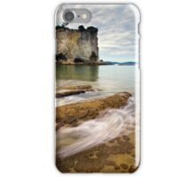 Stingray Bay Rush iPhone Case/Skin