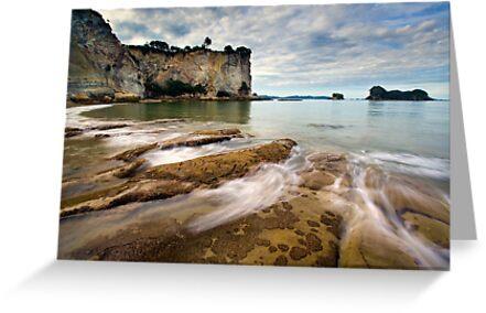 Stingray Bay Rush by Ken Wright