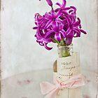 Vintage Hyacinth by Leslie Nicole