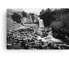 Thornton Force In Mono Canvas Print
