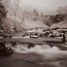 Above Thornton Force in Mono by Mark Dobson