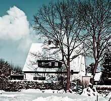 Covered in snow by digiphotography