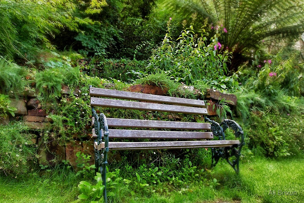 The Peaceful Bench, Australia by Ali Brown