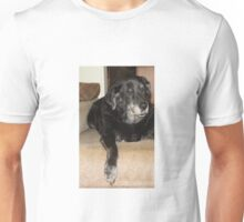 Dog Derp Dog Unisex T-Shirt