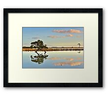 Lone Mangrove Dusk Framed Print