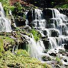 Cascades of Water at Big Cedar by John Carpenter