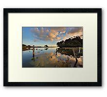 Waiaro Mangrove Reflections Framed Print