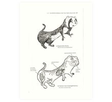 Textbook Hyperactive Ferret Art Print