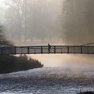 Misty Morning Peebles by photobymdavey