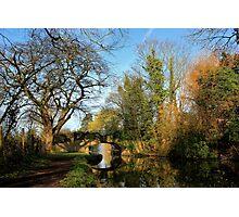 Spring at Lady's Bridge Photographic Print