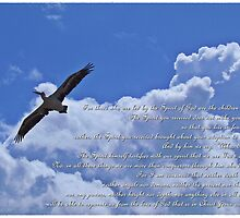 Romans 8:37-39 by Donna Keevers Driver