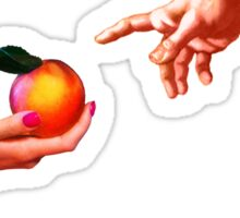 Creation of Froot Sticker