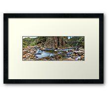 Karangahake Gorge Framed Print