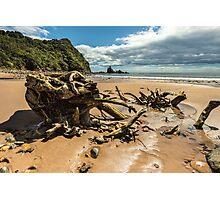 Sailors Grave Beach Photographic Print