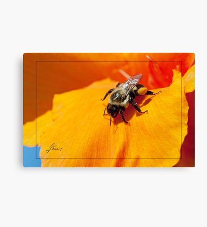 Pollen Fuel Canvas Print