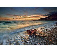 Coromandel Driftwood Photographic Print
