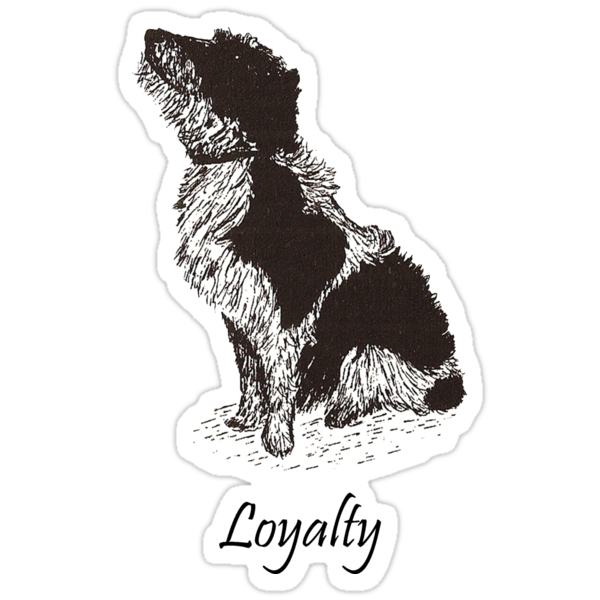 Loyalty by David Fraser