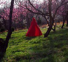 Spring hath Spring 1 by InKibus
