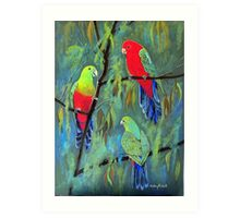 male and female king parrots Art Print