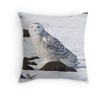 Assure Throw Pillow