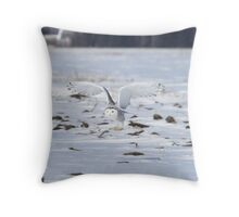 Divine Messenger Throw Pillow
