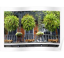 French Quarter Balcony Poster