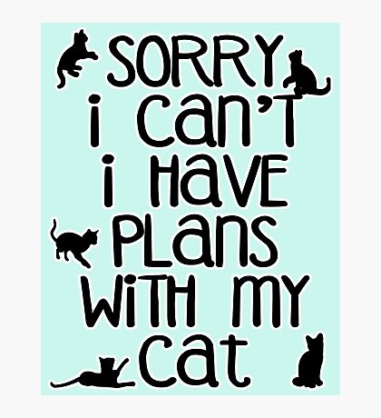 Cat Person Humor - Sorry I Can't Photographic Print