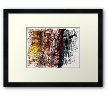 woman in hiding  Framed Print