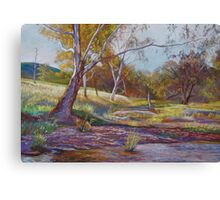 Beside the Creek Canvas Print
