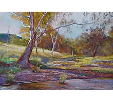 Beside the Creek Photographic Print