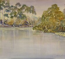 Yellow water billabong by Audrey  Russill