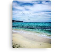 Much Needed Alone Time Canvas Print