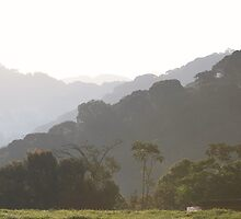 Nyungwe Forest Lodge by Ben Fatma Marc