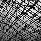 Steel Structure in black and white by jahina