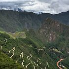 Green Machu Picchu by dtra